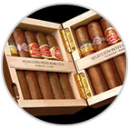 Cohiba Selection Petit Robusto Sampler