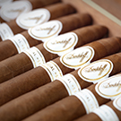 Davidoff Limited Edition Special 53